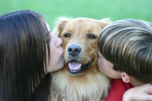 Artretyzm u psów